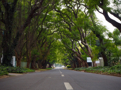 Best Suburbs in Johannesburg